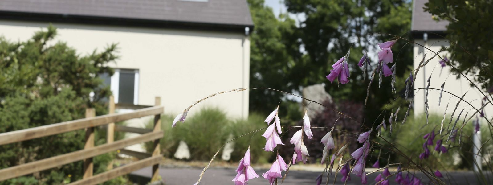 Country self catering lodges
